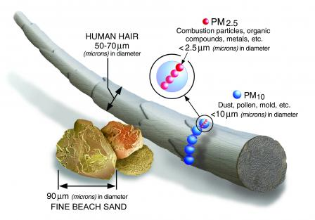 particulate matter size